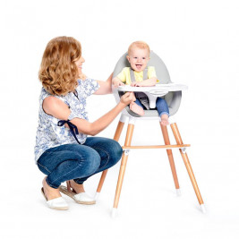 Kinderkraft Finished high Chair 2 in 1