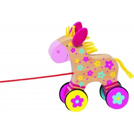 Horse, animal, shoot Clahra Susibelle
