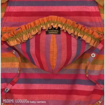 Madame Googoo Classic Full Buckle Stripy